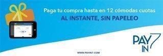 Payin7